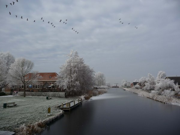 16- Pand winter